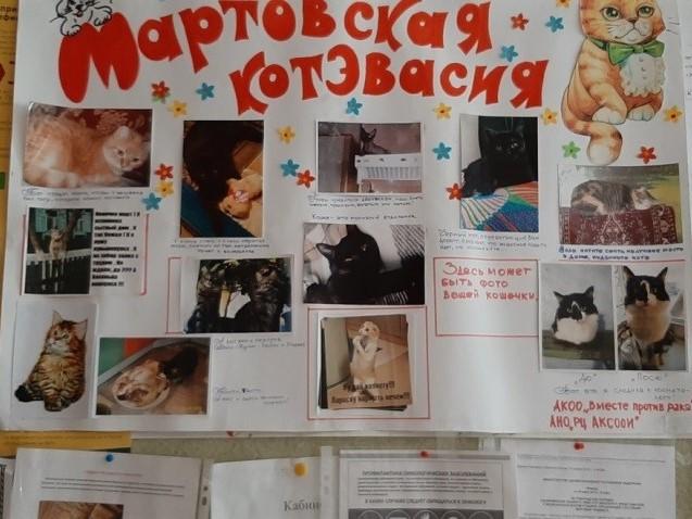 «Мартовская котэвасия» поздравление женщин в онкодиспансере г. Рубцовска (4)