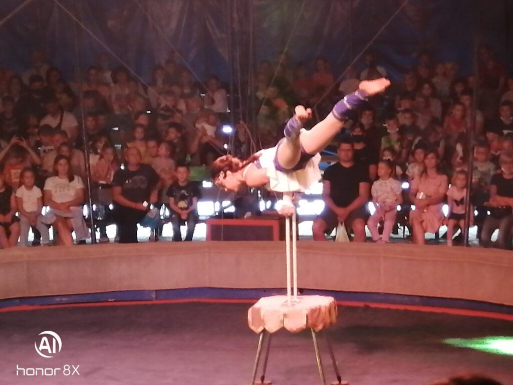 Активисты Бийского представительства АКОО «Вместе против рака» посетили купольный цирк