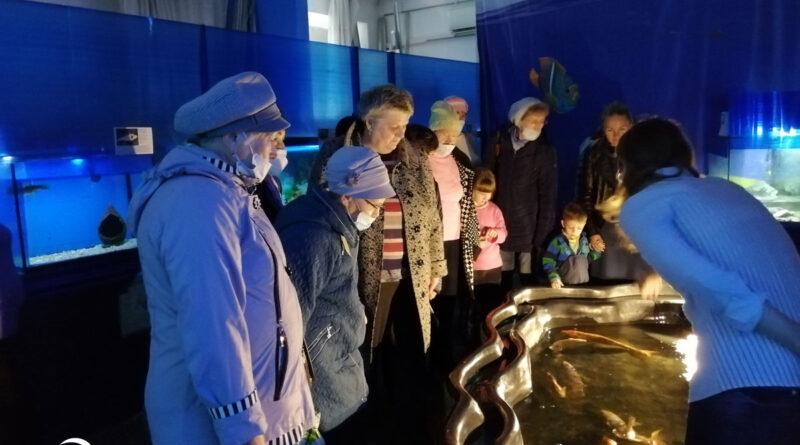 Специалисты и добровольцы АКОО «Вместе против рака» в г. Бийске побывали на выставке рыб